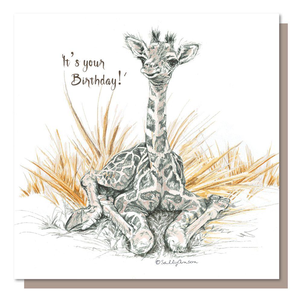 BES009-BabyGiraffe