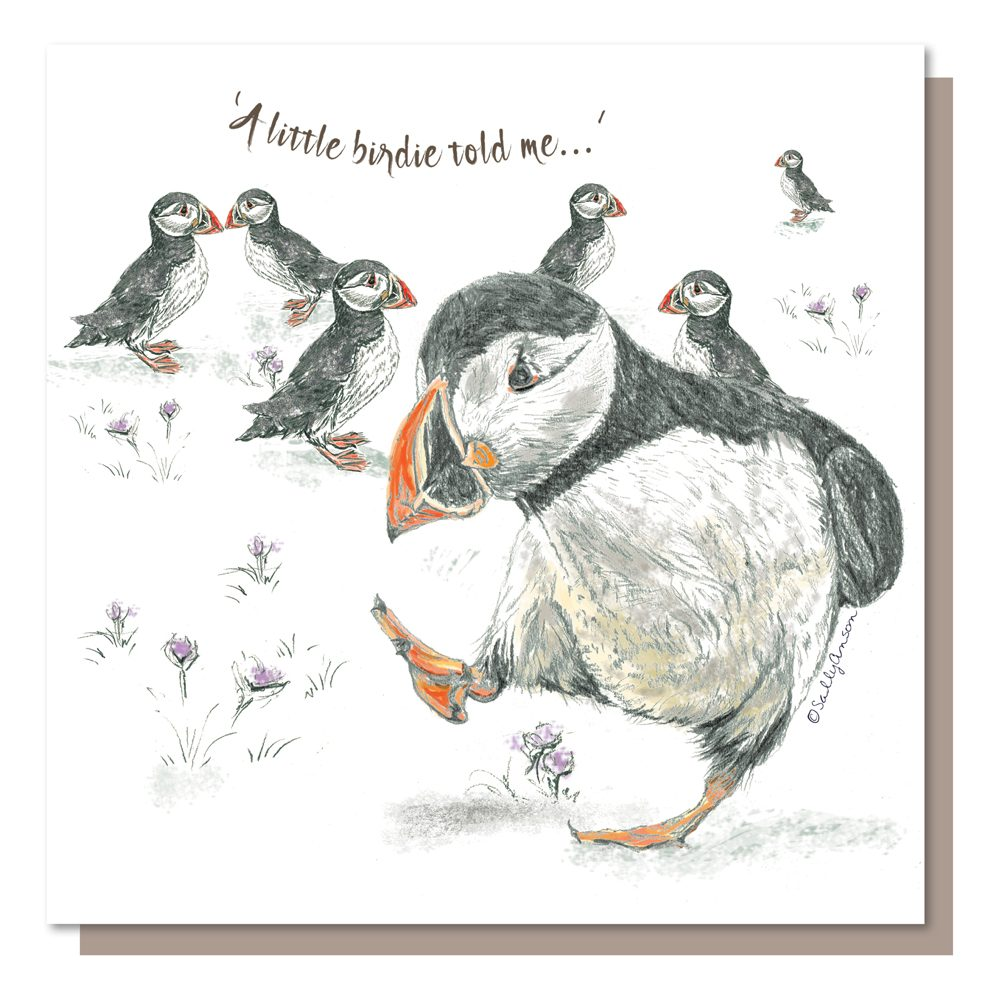 BES037-Puffins