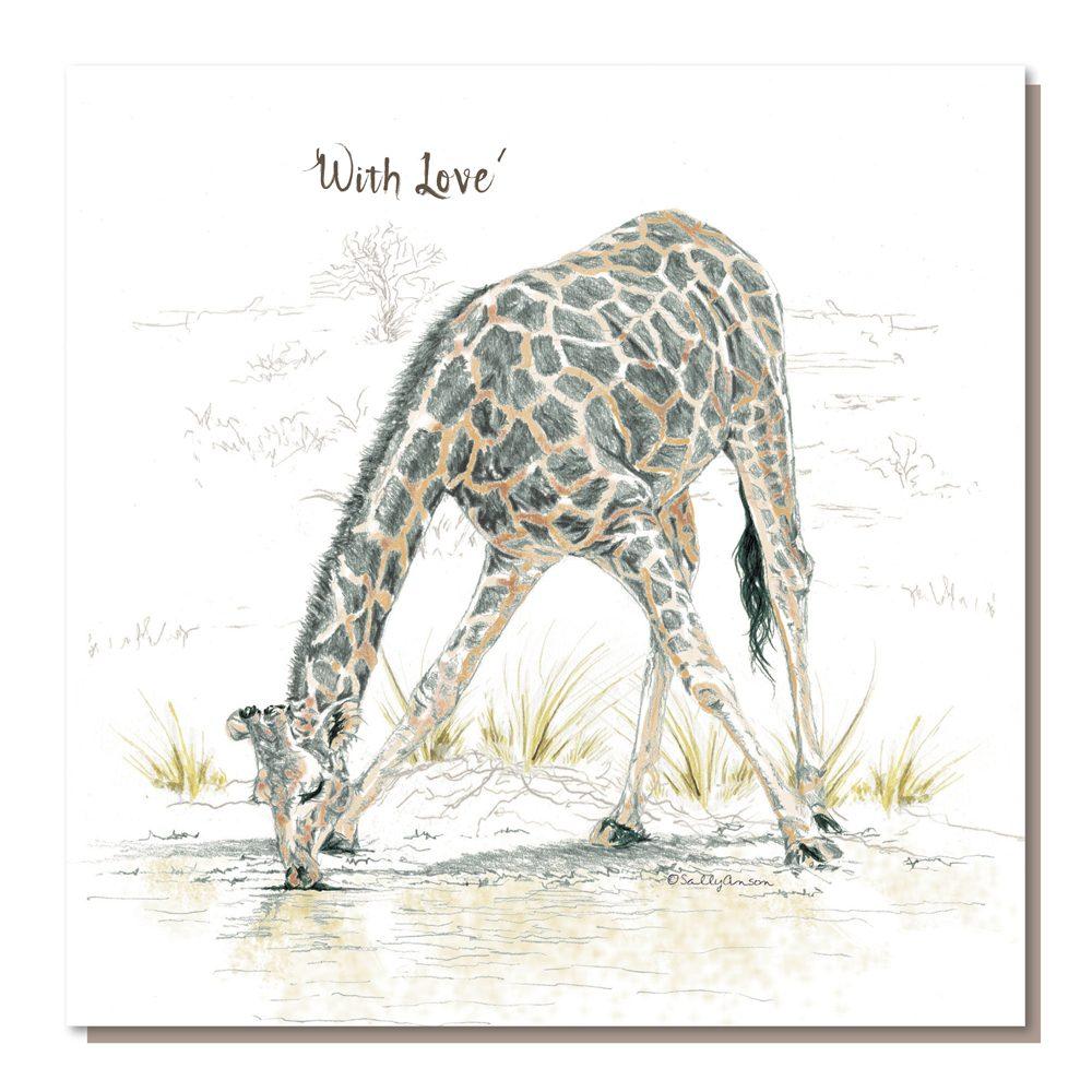 BES09a - Giraffe Drinking