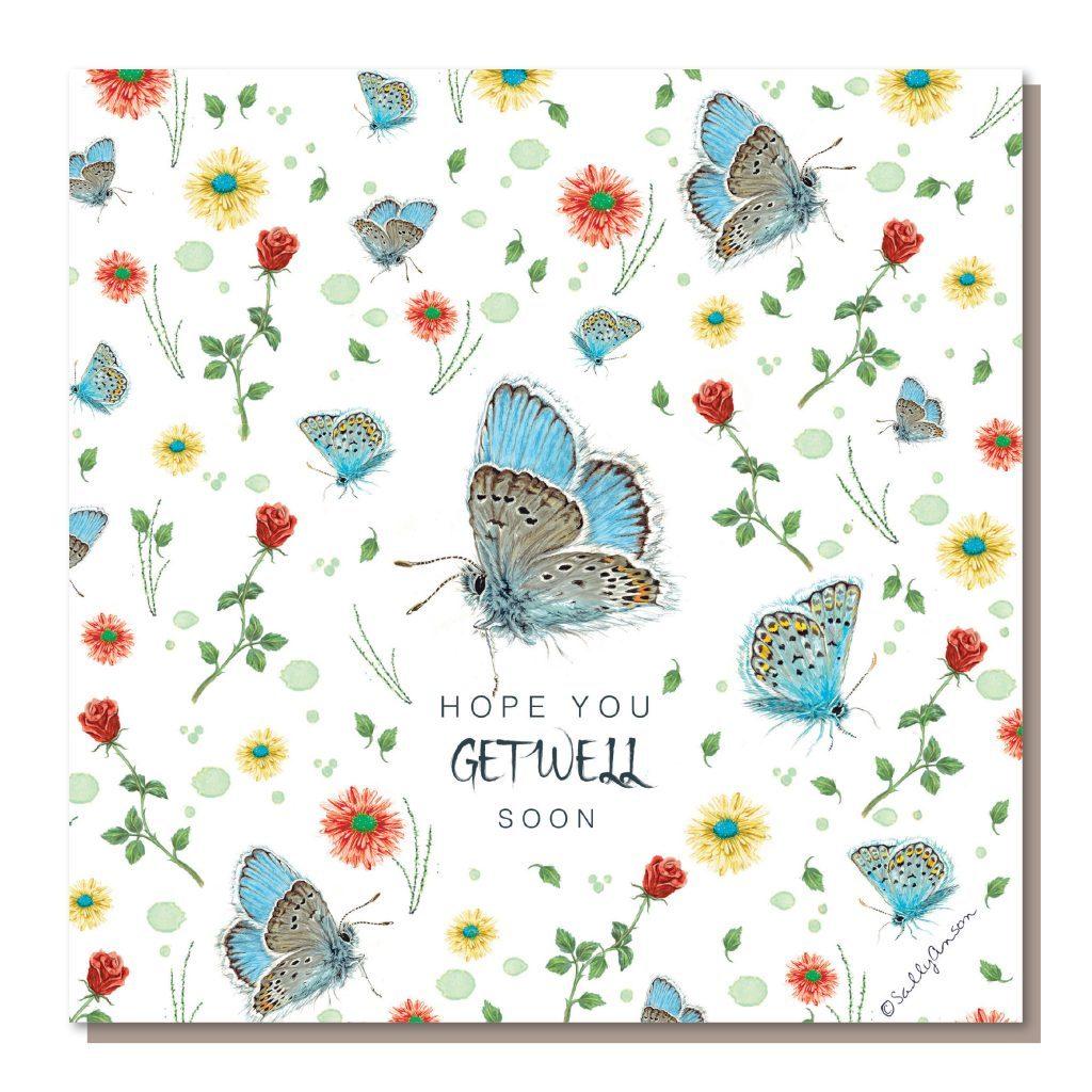 DD002-Butterflies