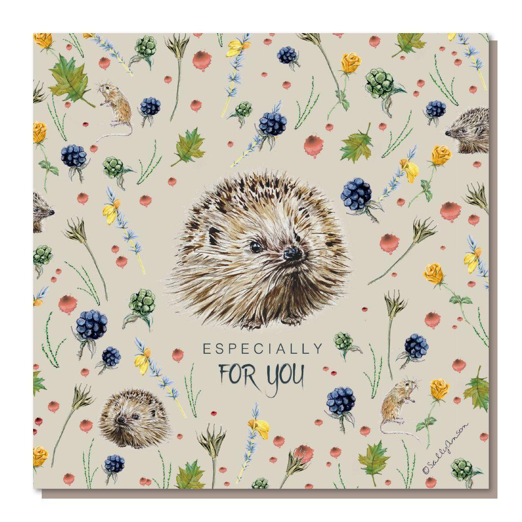 DD011-Hedgehogs