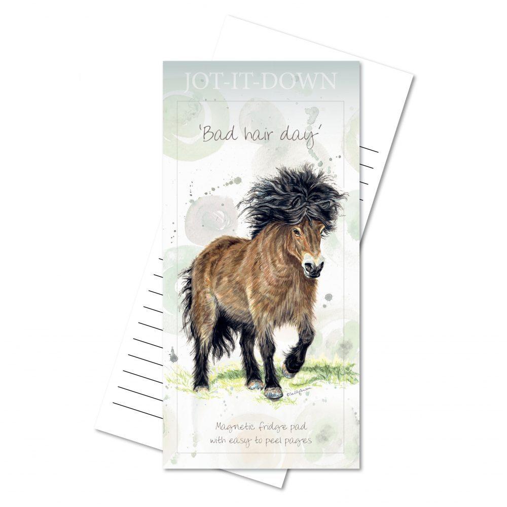MPad-Pony