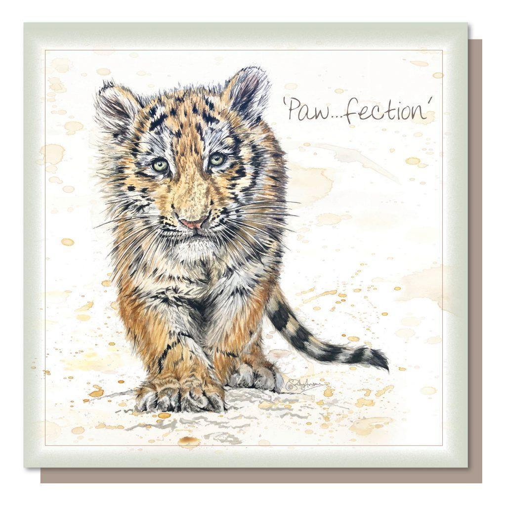 SEC051-Tiger Cub