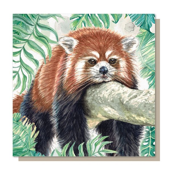 SJB020 - Red Panda