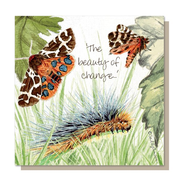 SM006-Tiger Moth Meadow