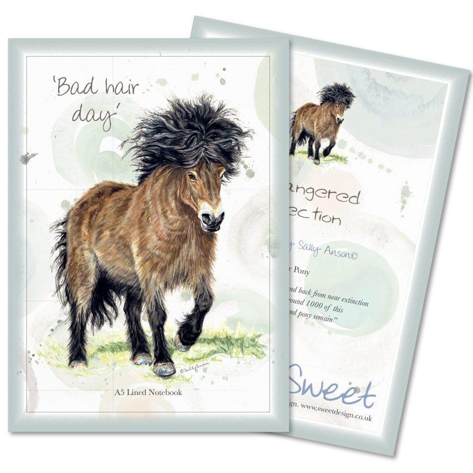 A5Notebook-Pony