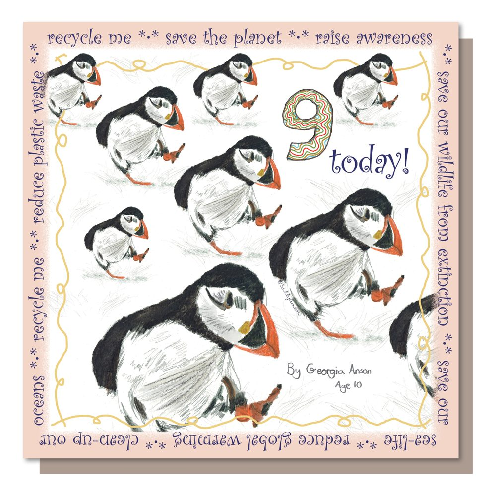 Age9-SS037-Puffins