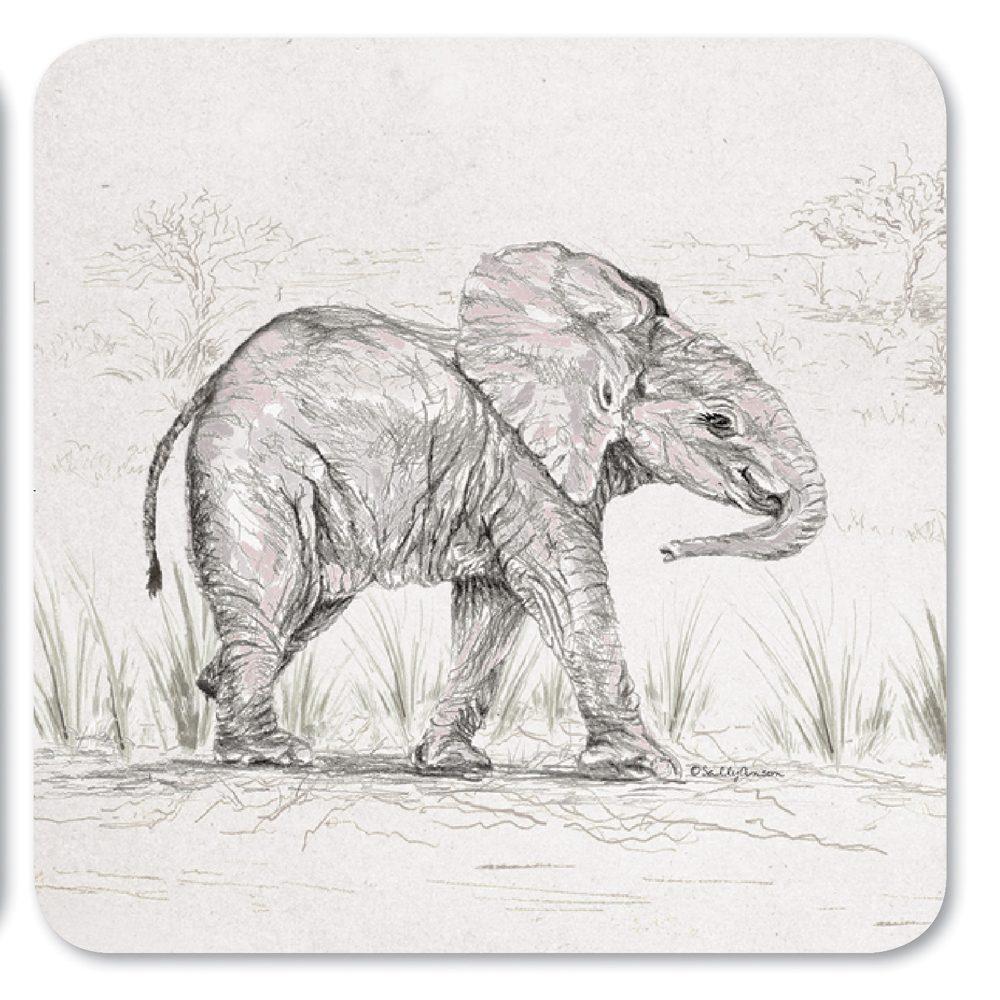 COASAV33-ElephantCoaster