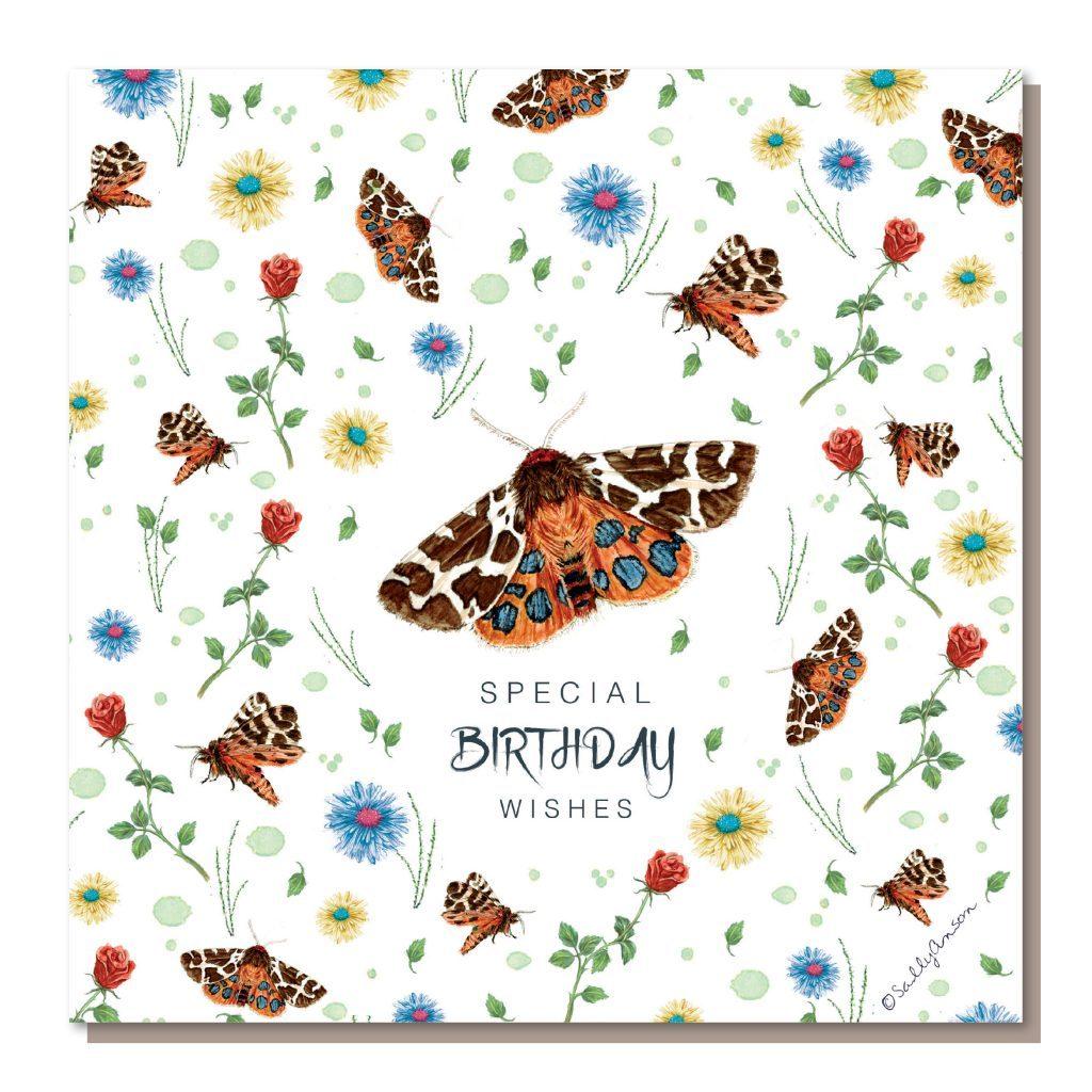 DD003-Moth