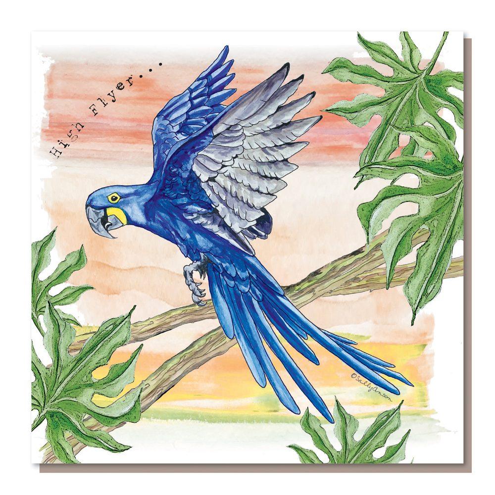 SAR007-Hyacynth Macaw