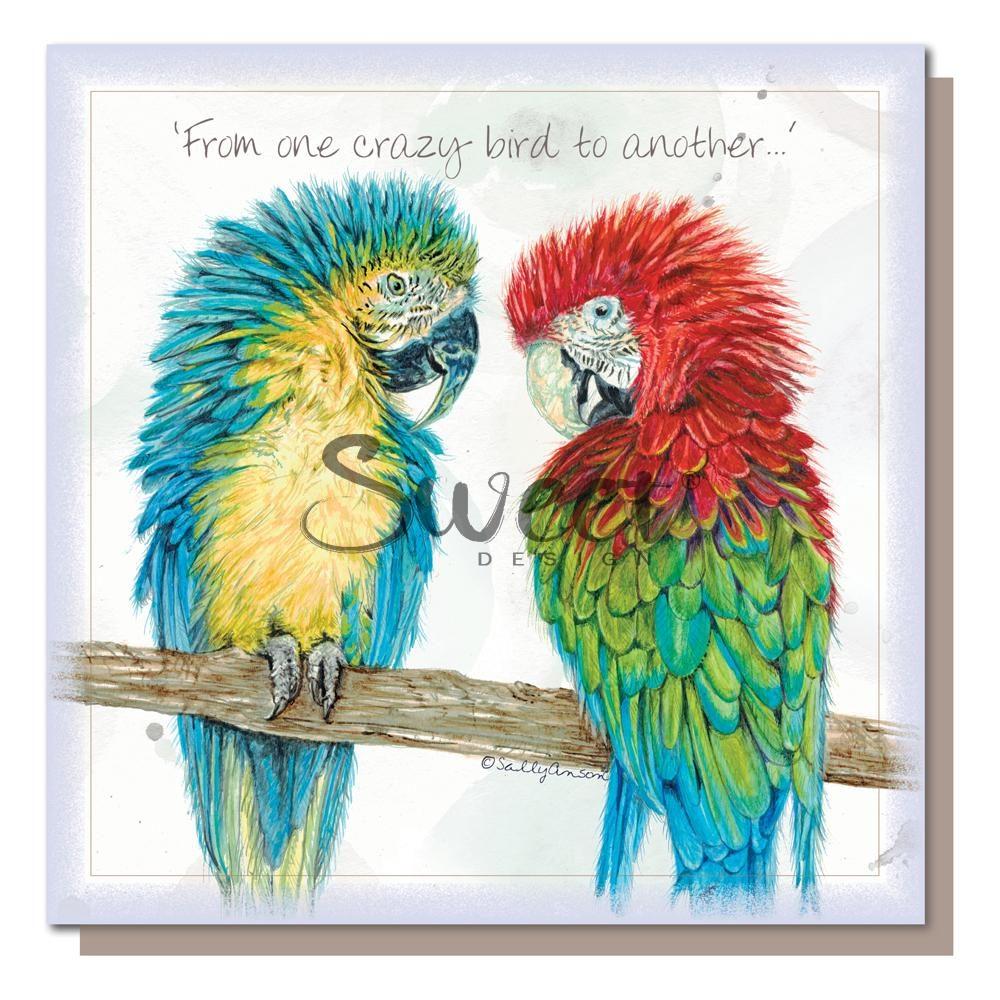 SEC044-Macaws