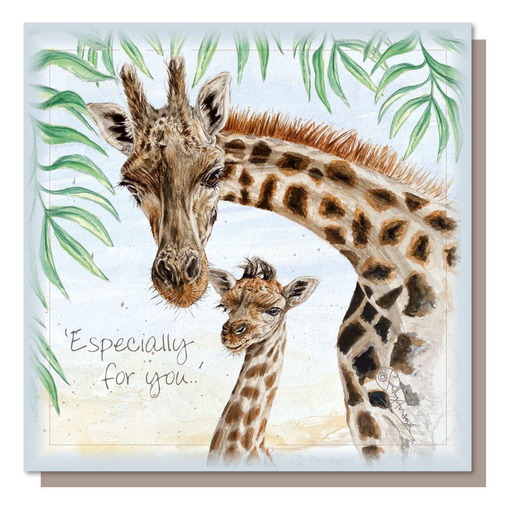 SEC050-giraffes