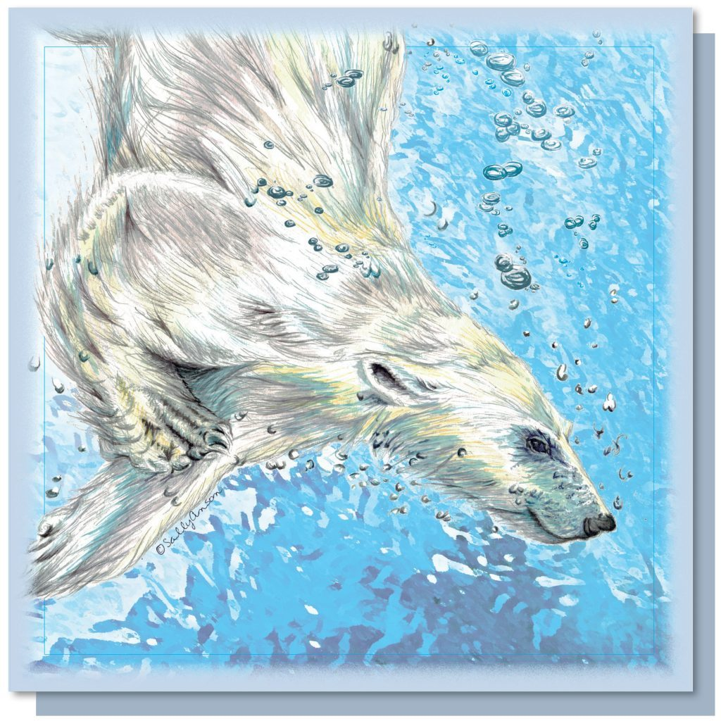 SEW009NC - Polar Bear Diving