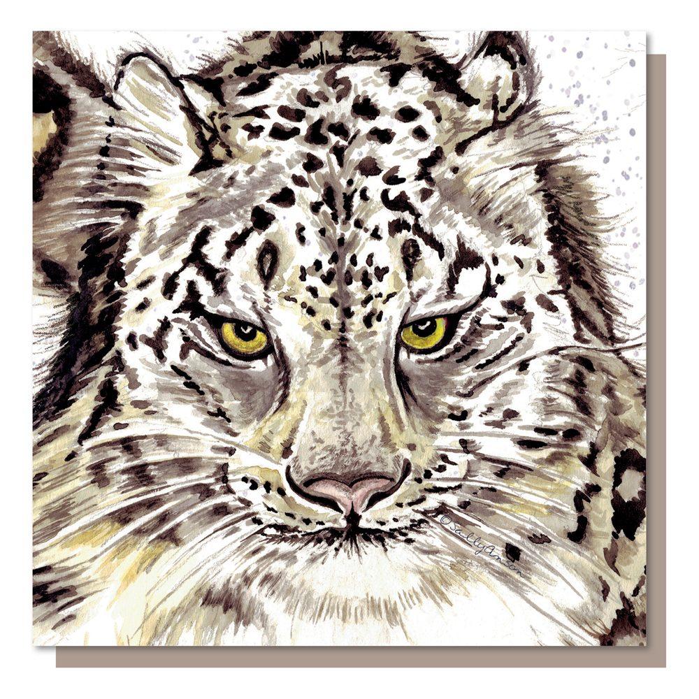 SJB001 - Snow Leopard