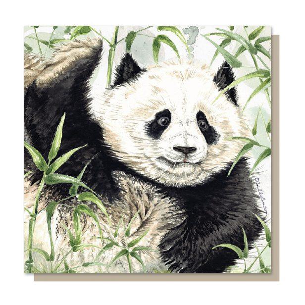 SJB003 - Giant Panda