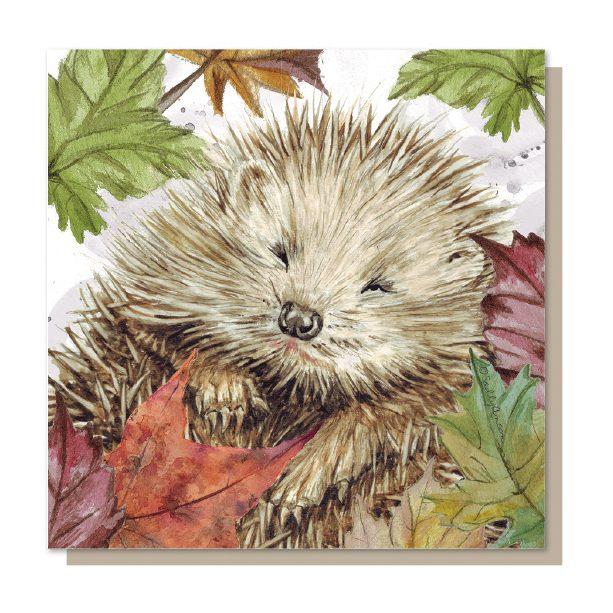 SJB011 - Hedgehog
