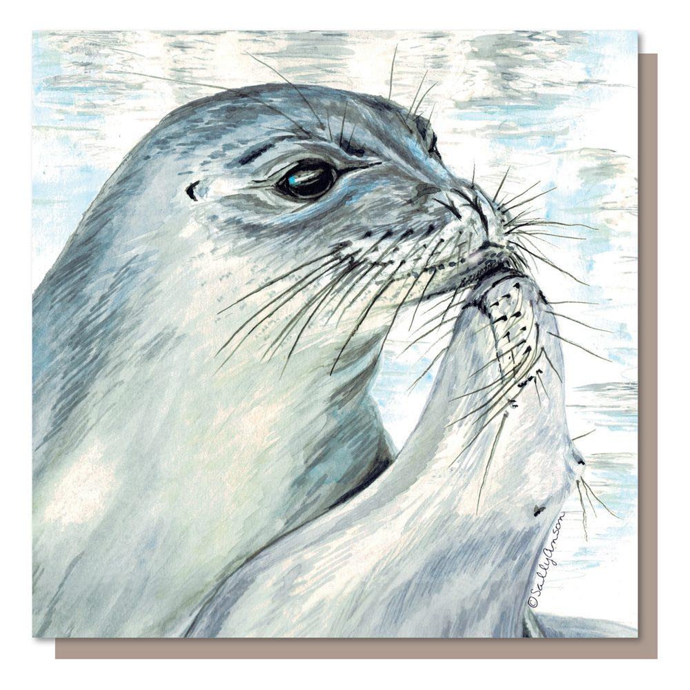 SJB019 - Seals