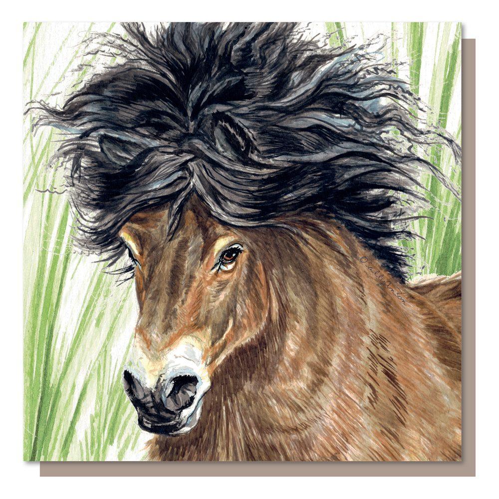 SJB021 - Exmoor Pony
