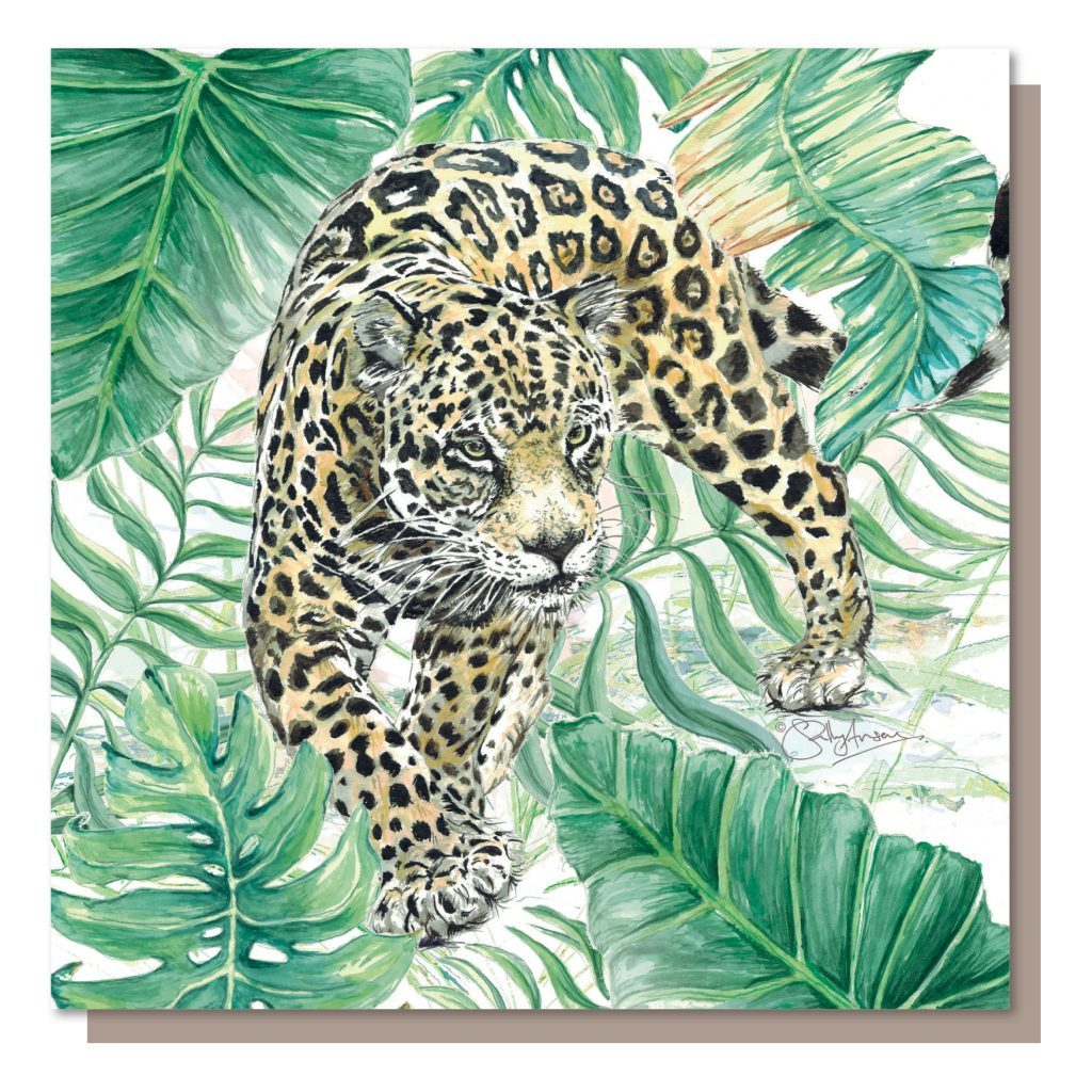SJB048 - Jaguar
